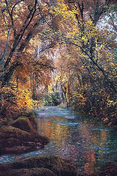 Calming Waters by John Rivera