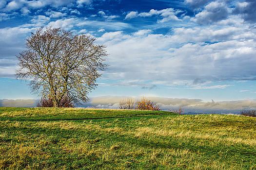 Calton Hill by Nicolas Artola