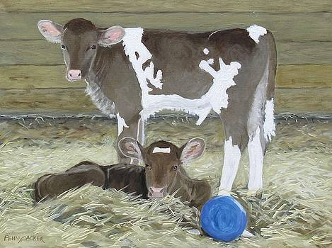 Calves Playing with a Blue Ball by Barb Pennypacker