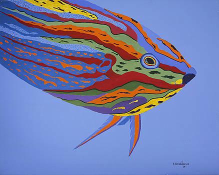 Calypso by John Edebohls
