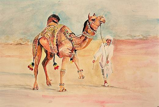 Camel and the handler. by Khalid Saeed