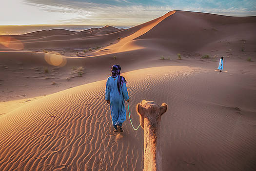 Camel in the Sahara by Cheryl Ramalho