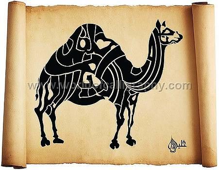 Camel by Khaleelullah Chemnad