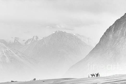 Camel ride in sand storm by Hitendra SINKAR