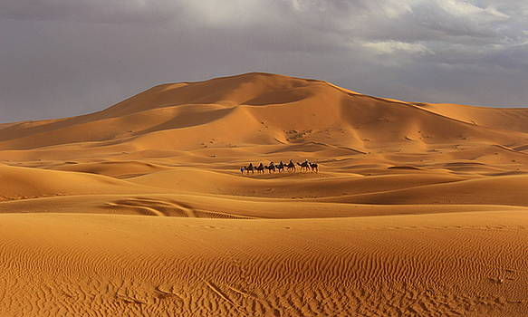 Ramona Johnston - Camel Trek