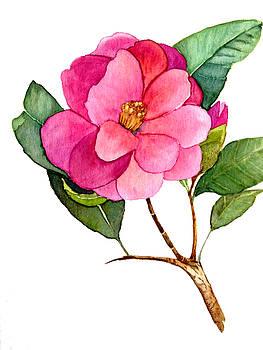 Camellia by Garima Srivastava
