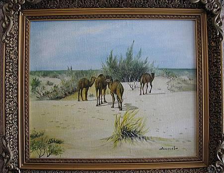 Camels by Alexandra Akinfieva
