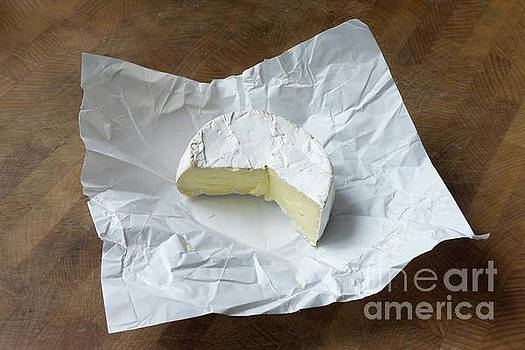 Camembert by Lionel F Stevenson