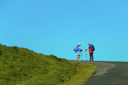 Camino Friends by Mike Shaw