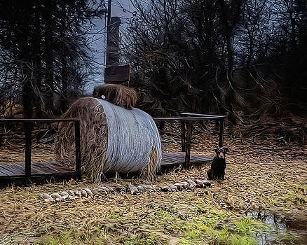 Camis Harvest by Philip A Swiderski Jr