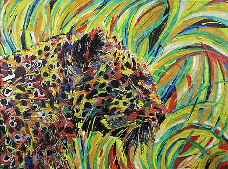 Camouflage by Farid Musthafa