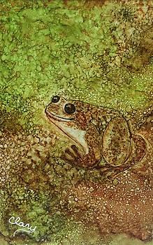 Gavi the Night Frog by Linda Clary
