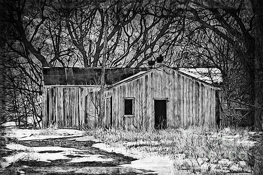 Camouflaged Wood Shed Two by Kathy M Krause