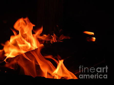 Camp Fire by Chris Tarpening