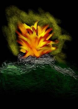 Campfire by Annie Dameron