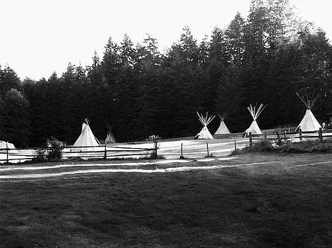 Campground On Vashon Island by Mark James Perry