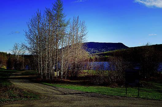 Hudson's Hope British Columbia by Robert Braley
