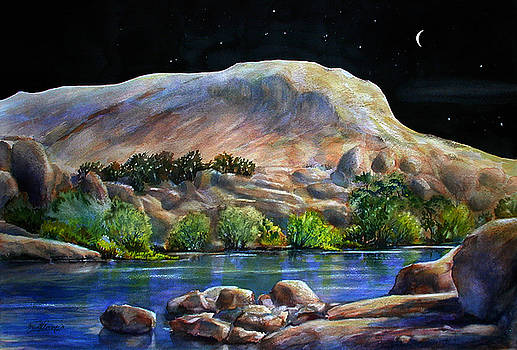 Camping in the Moonlight by John Mabry