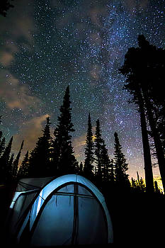 Camping Star Light Star Bright by James BO Insogna