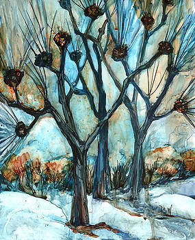 Peggy Wilson - Campus Trees