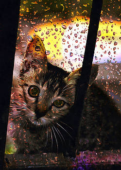 Bliss Of Art - Can I come in please