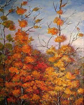 Canadian Autumn by Mirjana Gotovac