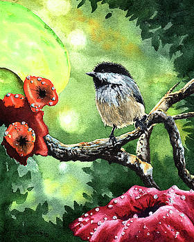 Canadian Chickadee by Timithy L Gordon