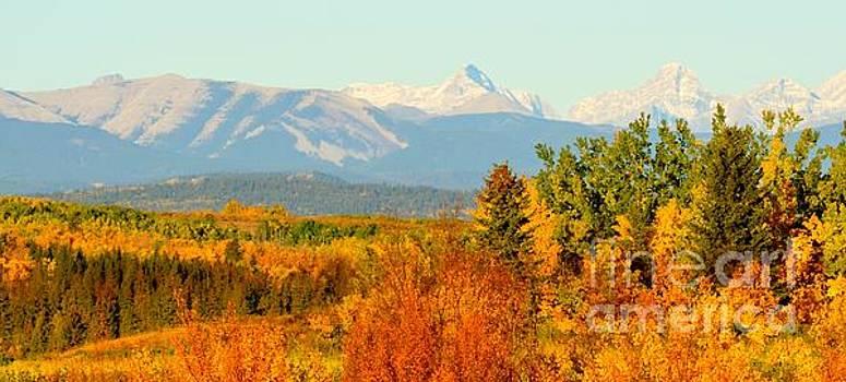 Canadian Fall by Stephanie  Bland