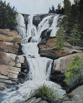 Canadian Falls by Maralyn Miller
