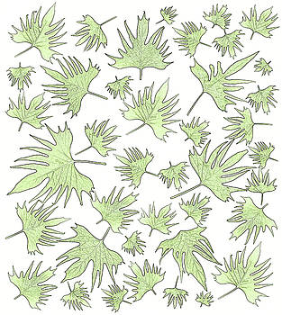 Sandra Foster - Canary Vine Leaves - Green