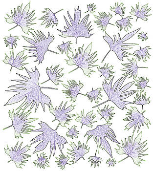 Sandra Foster - Canary Vine Leaves - Purple And Green