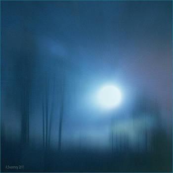 Cancerian Moon by Nita Sweeney