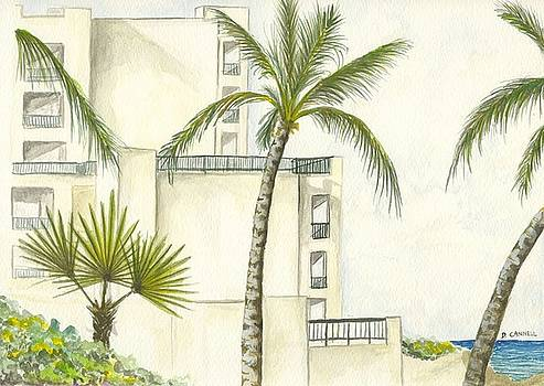 Cancun Palm Trees by Darren Cannell