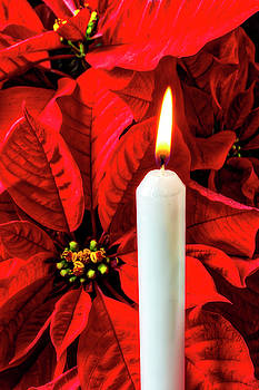 Candle And Poinsettia by Garry Gay