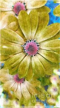 Candy Garden by Molly McPherson