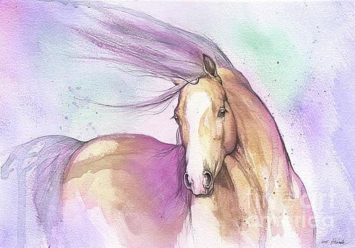 Candy pony by Angel Tarantella