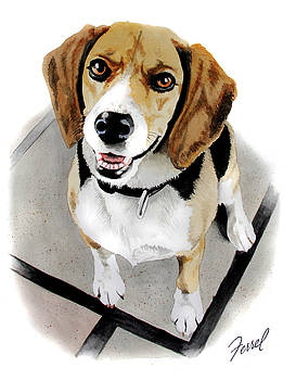 Canine Cutie by Ferrel Cordle