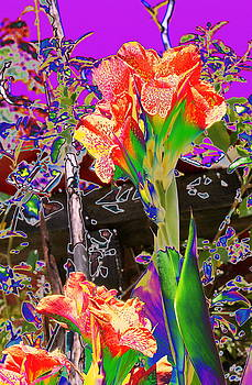 Canna Abstract 8 by M Diane Bonaparte