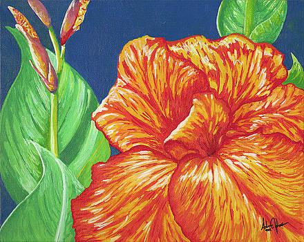 Adam Johnson - Canna Flower