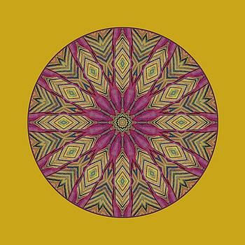 Nikolyn McDonald - Canna Leaf - Mandala - Transparent