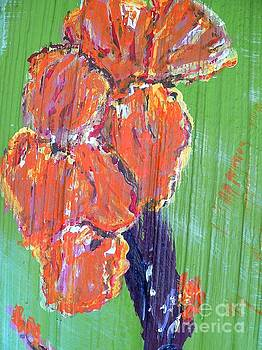 Canna Lilies 2 by Craig King