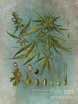 Justyna Jaszke JBJart - Cannabis