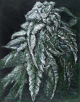 Cannabis series, Unknown strain II by Alyssa Serpentini