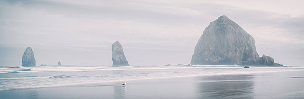 Cannon Beach Haystack by Chad Tracy