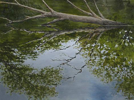 Canoe Painting 6 by Jason Sawtelle