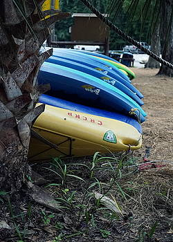 Laurie Perry - Canoe Row