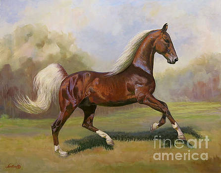 Canter by Jeanne Newton Schoborg