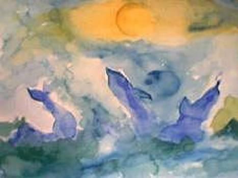 Canto Dei Delfini - Pantelleria Sicilia by Barbara Reale