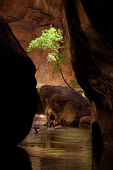 Canyon Hiker by David Chasey