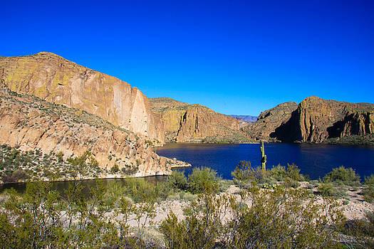 Canyon Lake Vista by Dawn Richards